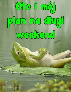 oto_i_moj_plan_na_dlugi_weekend_6671